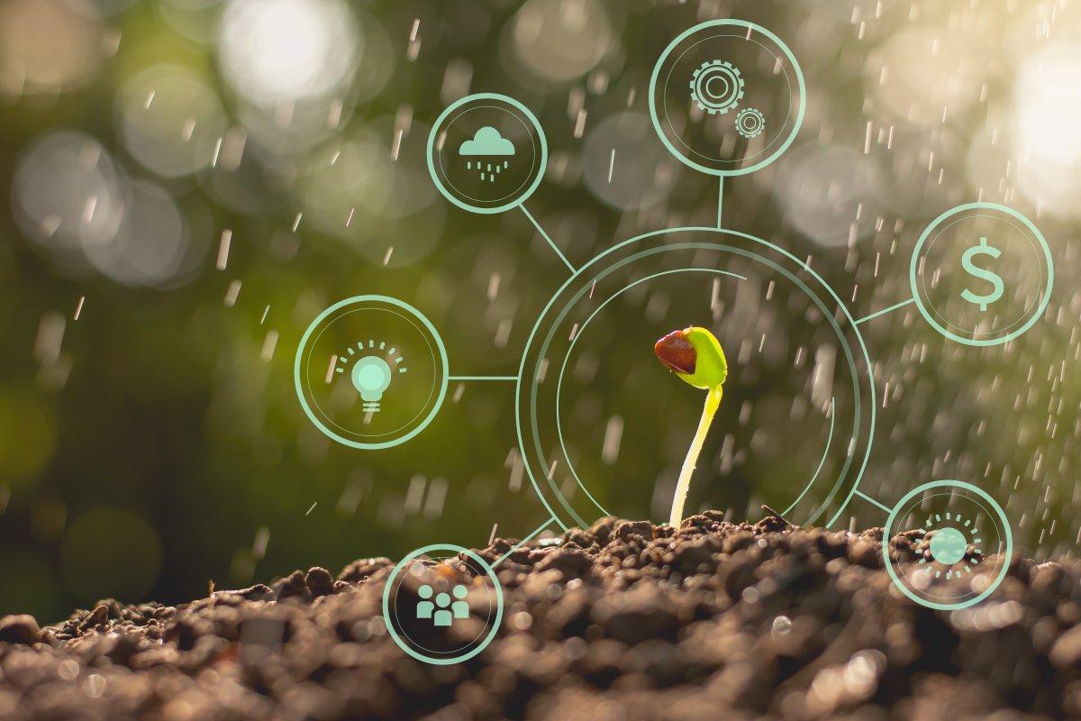 Smart Garden: Der Garten pflegt sich selbst