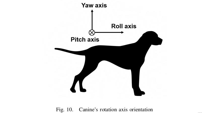 Robotikkonferenz SSRR: Cyberhunde, Kabelkrabbler und Roboter am Fallschirm