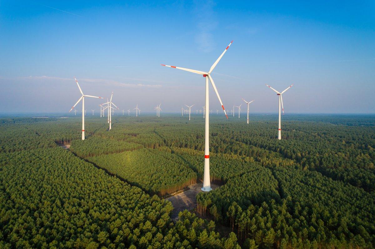 Stromkonzern RWE schlägt Runden Tisch zum Windkraft-Ausbau vor
