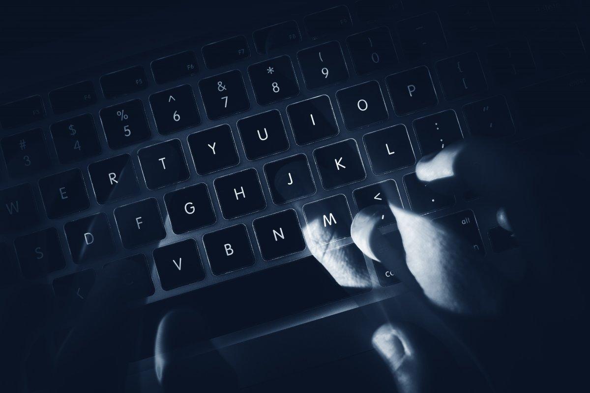 Manipulierte Premium-Themes schleusen Malware auf Zehntausende WordPress-Sites