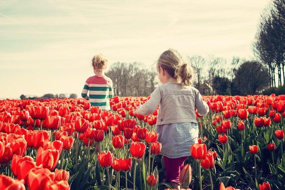 Corona-Reiseregeln: Familien canceln Urlaub in den Niederlanden