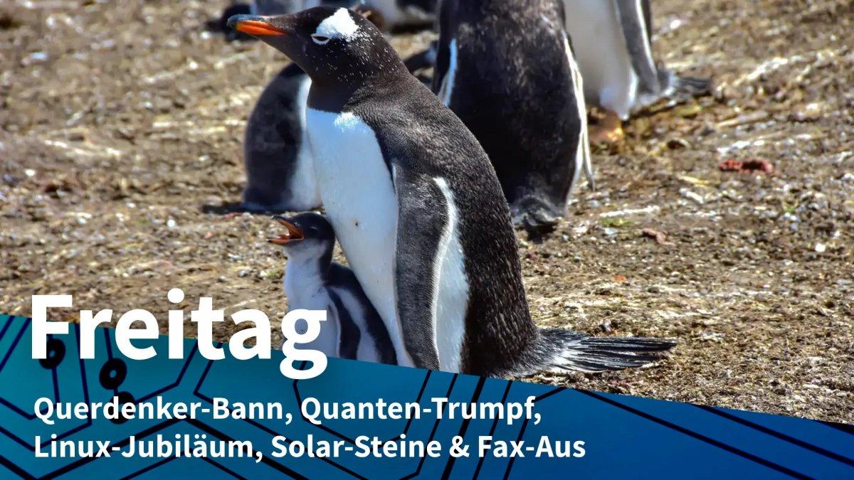 Freitag: Querdenker-Bann, Quanten-Trumpf, Linux-Jubiläum, Solar-Steine & Fax-Aus