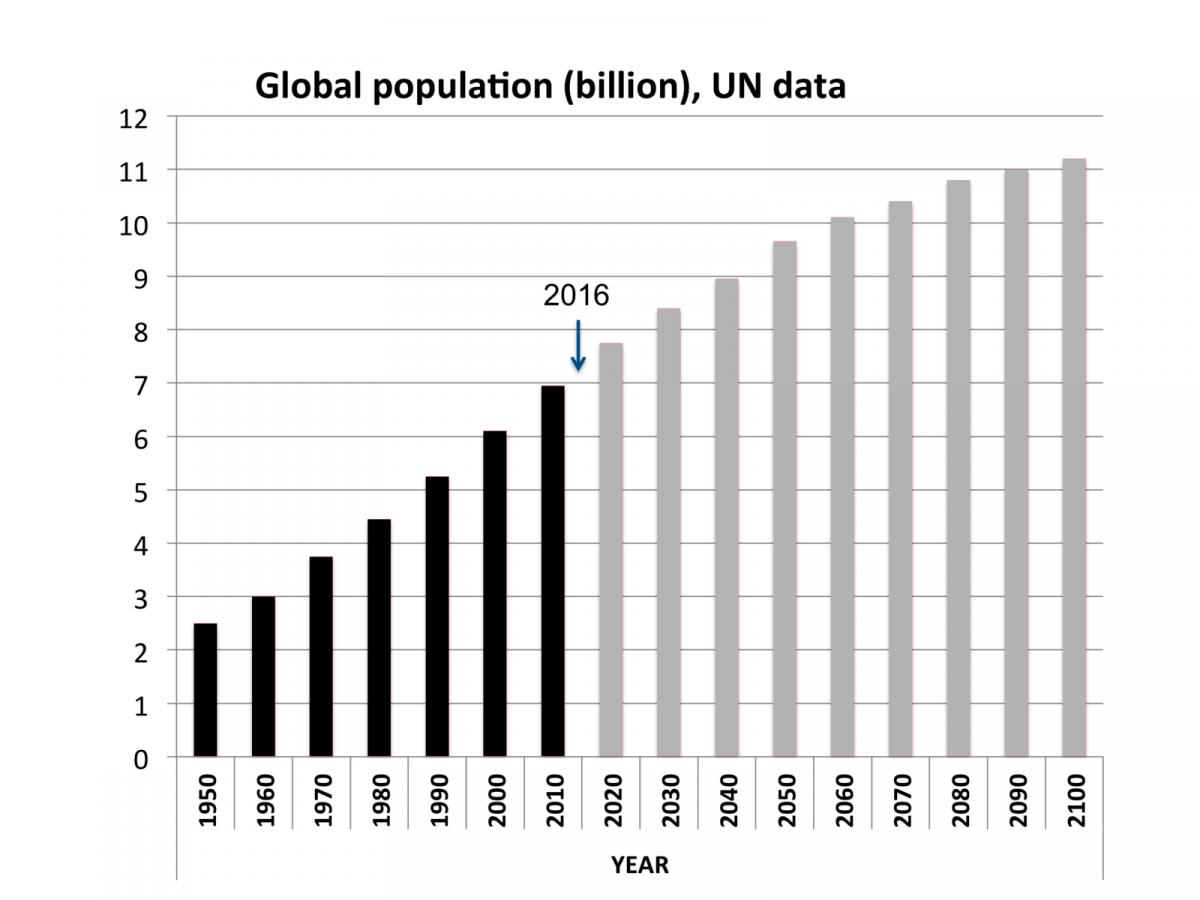 Reduzierung des Bevölkerungswachstums als Klimaschutz