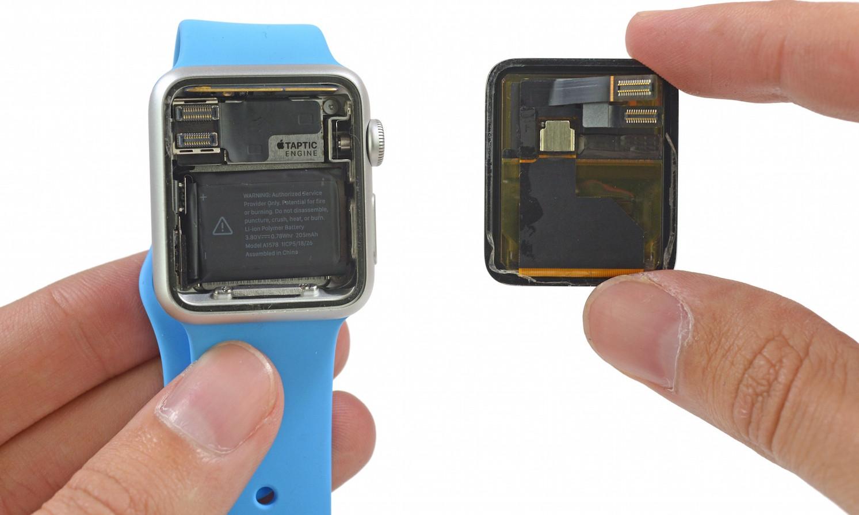 Erster Blick ins Innere der Apple Watch