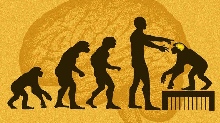 US-Forscher distanziert sich von Studie mit Menschen-Genen in Affen
