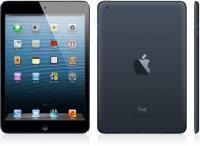 Apple iPad mini  16GB, schwarz (MD528FD/A)