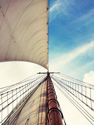 Segel im Wind von m3a