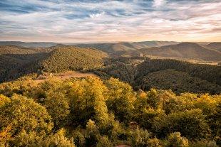 Naturpark nördliche Vogesen von Tarcitaxx