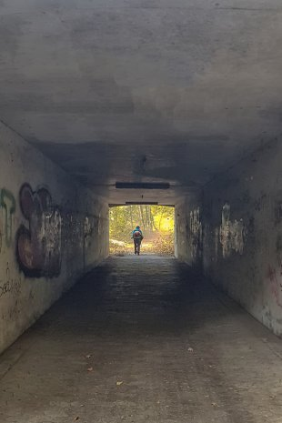 Laubbläser am Ende des Tunnels von WSCU-Foto