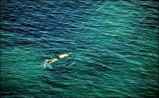 Der Schwimmer von Mira1959