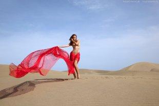 Reina del desierto 4 von Deca-Dence