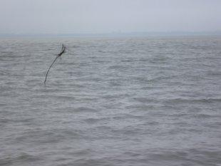 Wichtiges Seezeichen von AUde-Vide