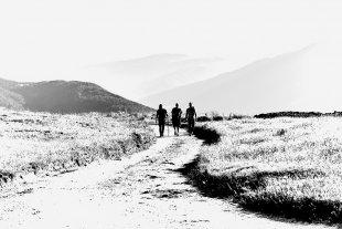 wandern...2 von Texas Longhorn