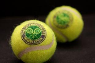 Erinnerungen an Wimbledon von Ladislav Danek