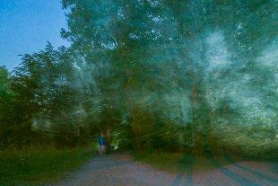 Spaziergang im Park von 35mm