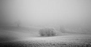 Bei Kälte hilft Kuscheln... von Bernd Unger