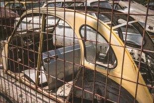arme Ente hinter Gitter von systemhaus d