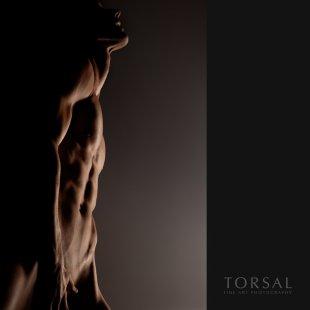 towards-the-light von Torsal