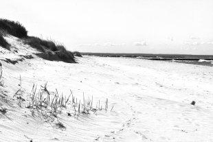 Küste von Heike Maier