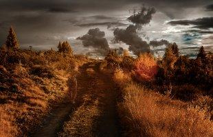 Jagende Wolken von Ralph Altmann