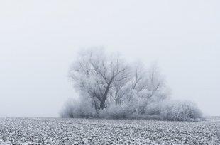Winterhauch II von 54gradpixel