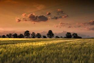 Morgenland von Nenali