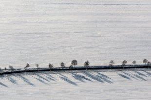 Straßenallee im Winter von Joachim Kopatzki