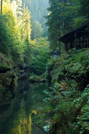 kleines Haus am Wald von Der Purist