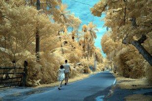 Straßenscene (Infrarot) von haffe