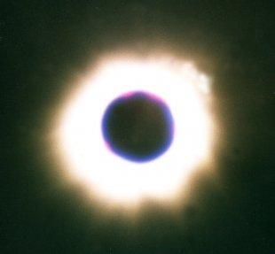 Corona19-99 von Blitzbirnchen