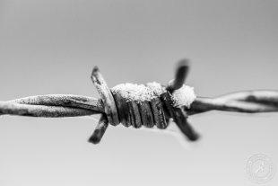 Stacheldraht im Schnee von Stephan Strange