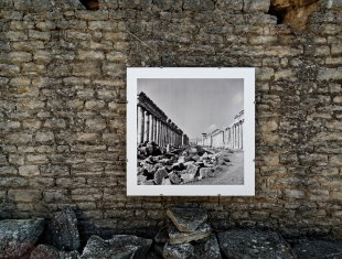 Bilder einer Ausstellung - Palmyra von ispin