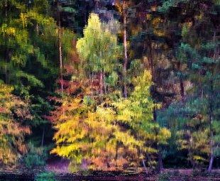 Herbst im Spiegel von Addi Beck