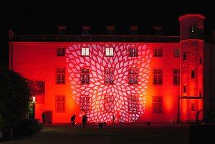 Night of Light 2020 - Ludwig Museum von christof (1)