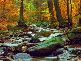 Herbst Langzeitbelichtung Wasserfall Harz von V0SSI