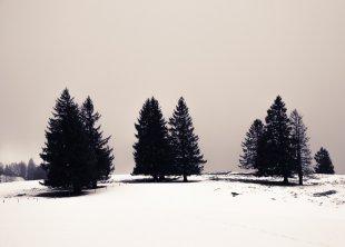 Winterlandschaft von Grabownik
