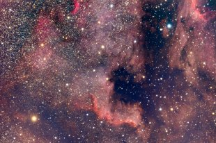 Nordamerikanabel (NGC7000) von .ChristiaN.