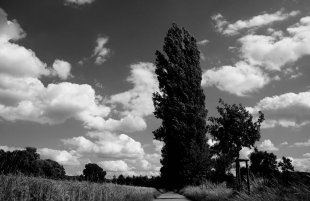 Landschaft im Kraichgau von Andreas Stier