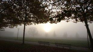 Novembermorgen von Kater Schnurz
