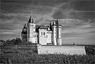 Schloss Saumur von Manfred Fessel