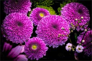 Small pink balls von FMW51