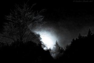 Licht ins Dunkel von H.-Dieter Fischer