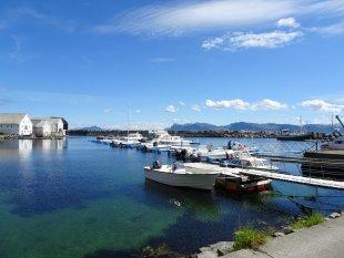 Vogelinsel Runde, Norwegen von Rudi72