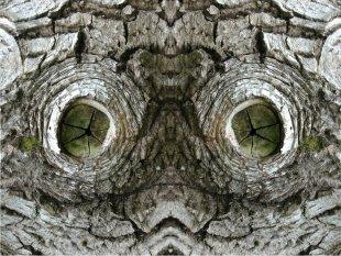 GI - Gesichter - Wir werden beobachtet! von gsemrau