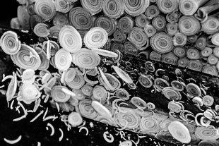 Markt Kambodscha Zitronengras von Andrea Künstle