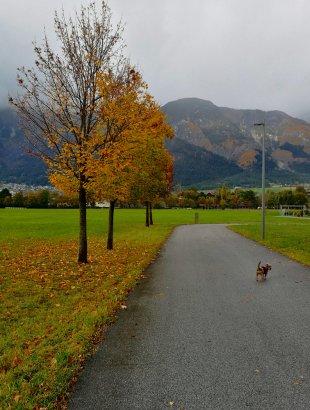 Herbstwetter von Jademax