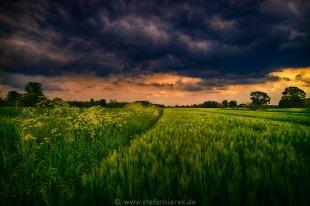 Sturm am Abend von Radonart