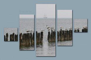 Möwen mit Segelboot von Didjeh
