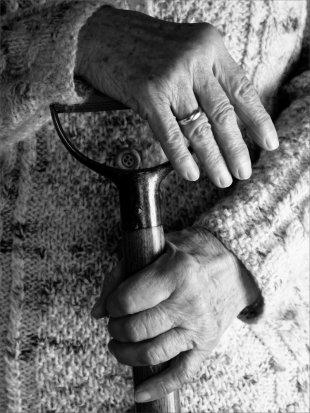 Gärtnerinnenhände von baumfrosch