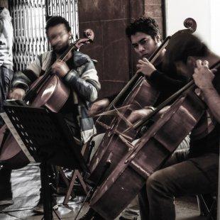 Cellisten von Jalois